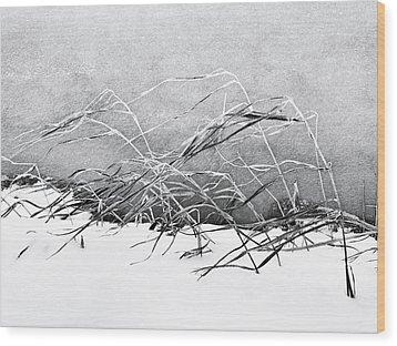 Sway Wood Print by Karen Stahlros