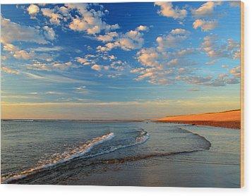 Sweeping Ocean View Wood Print