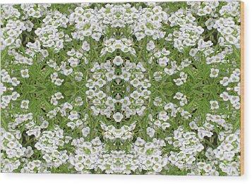 Wood Print featuring the digital art Sweet Alyssum Abstract by Linda Phelps