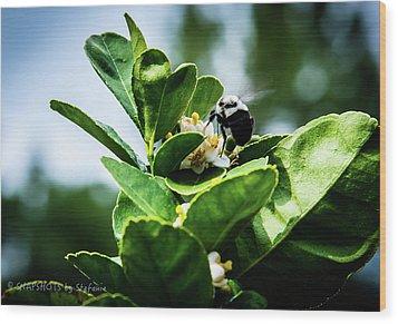 Sweet Bee Wood Print by Stefanie Silva