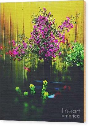 Sweet Boronia Wood Print by Blair Stuart
