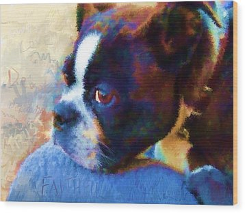 Sweet Boston Betty Wood Print by Cindy Wright