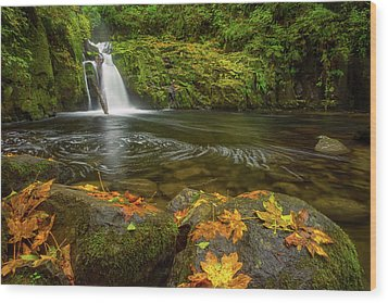 Wood Print featuring the photograph Sweet Creek Falls In Autumn by Patricia Davidson