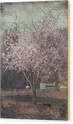 Sweet Kisses Under The Tree Wood Print by Laurie Search