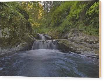 Sweet Little Waterfall Wood Print by David Gn