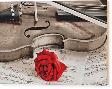 Sweet Music Wood Print by Don Schwartz