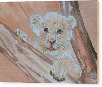Sweet One Wood Print by Connie Valasco