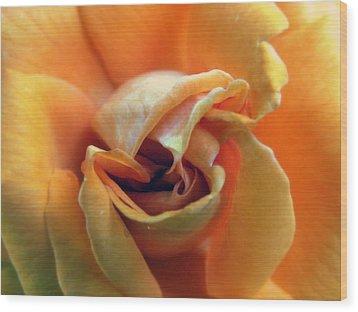 Sweet Seduction Wood Print by Karen Wiles