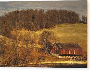 Sweet Sweet Surrender Wood Print by Lois Bryan