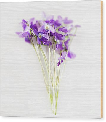 Sweet Violets Wood Print by Linde Townsend