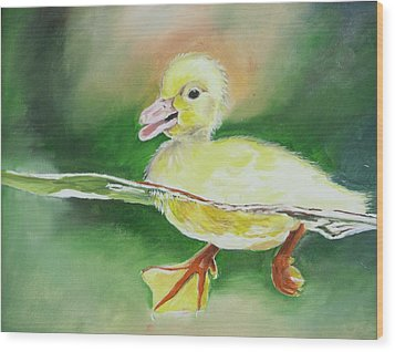 Swimming Duckling Wood Print