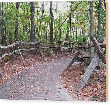 Switchback Walkway Wood Print by Suzanne  McClain