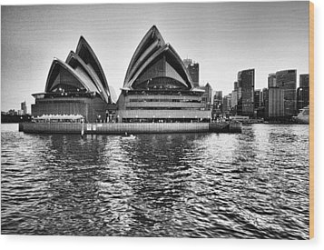 Sydney Opera House-black And White Wood Print by Douglas Barnard