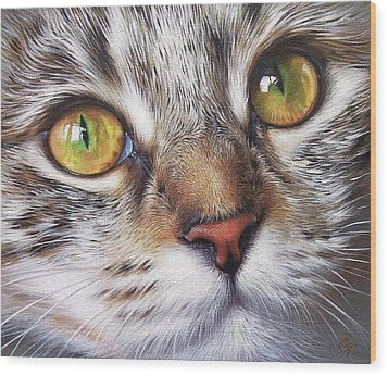 Tabby Look Wood Print