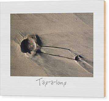 Tag-a-long Wood Print by Peter Tellone