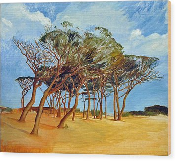 Tahiti Beach -st. Tropez Wood Print by Rainer Jacob