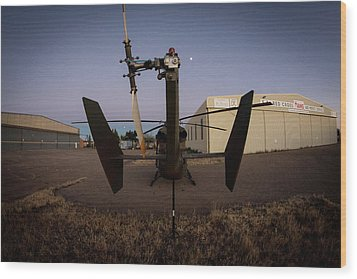 Wood Print featuring the photograph Tailblade by Paul Job