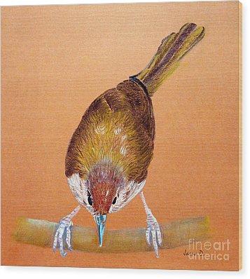 Tailor Bird Wood Print by Jasna Dragun