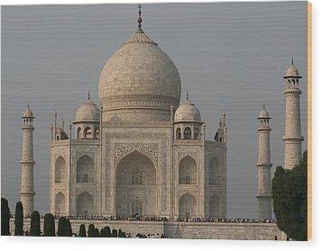 Taj Mahal Wood Print by Andrei Fried