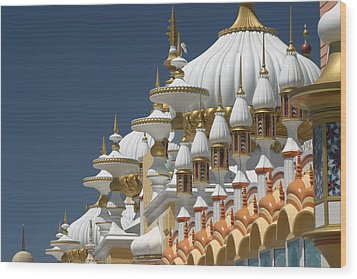 Taj Mahal Wood Print by Living Color Photography Lorraine Lynch