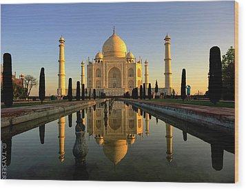 Taj Mahal Wood Print by Tayseer AL-Hamad