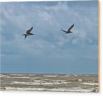 Wood Print featuring the photograph Take Flight  by Ken Frischkorn