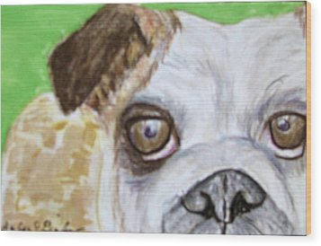 Take Me Home - Bulldog Wood Print by Barbara Giordano