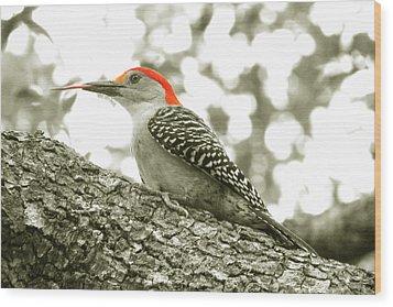 Take That Wood Print by Peg Urban