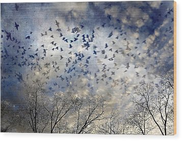 Wood Print featuring the photograph Taken Flight by Jan Amiss Photography