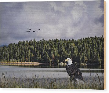 Wood Print featuring the photograph Taking A Break As Evening Falls by Diane Schuster