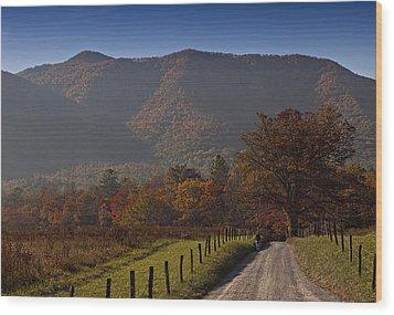 Taking A Walk Down Sparks Lane Wood Print