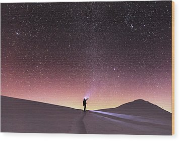 Talking To The Stars Wood Print by Evgeni Dinev