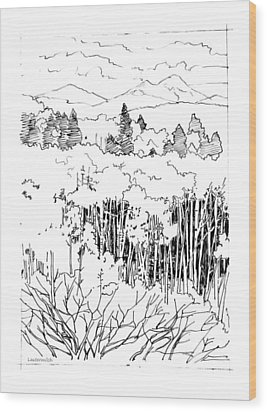 Tall Aspens Rocky Mountains Wood Print by John Lautermilch