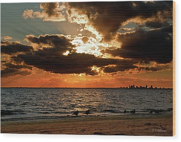 Tampa Bay Sunset Wood Print by Christopher Holmes