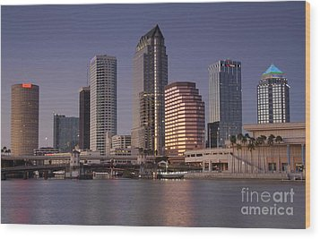 Tampa Florida  Wood Print by David Lee Thompson