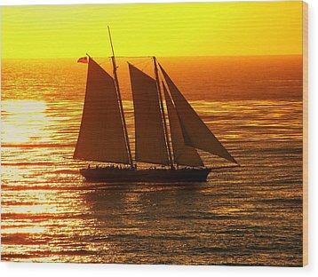 Tangerine Sails Wood Print by Karen Wiles