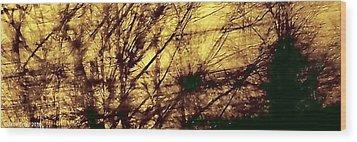 Tangled II Wood Print by Jane Tripp