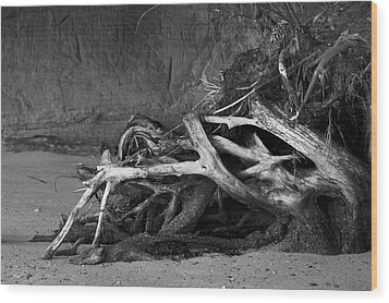 Wood Print featuring the photograph Tangled Knots - Tree Roots by Jane Eleanor Nicholas