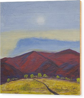 Taos Dream Wood Print by John Hansen