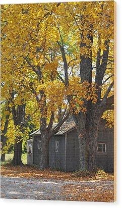 Tar Paper Shack Wood Print by Tim Nyberg