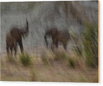 Tarangire Elephants 1 Wood Print