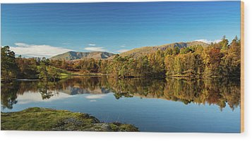 Tarn Hows Wood Print by Mike Taylor