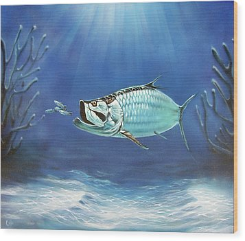 Tarpon Wood Print by Larry Cole