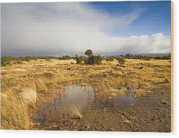 Tasmanian Storm  Wood Print by Mike  Dawson