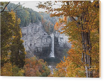Taughannock Autumn Wood Print