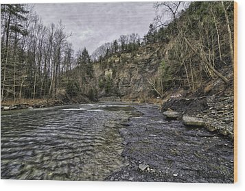 Taughannock Creek Wood Print