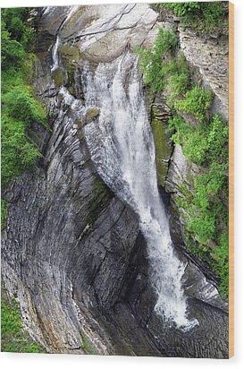 Taughannock Falls Upper Rim Trail Wood Print by Christina Rollo