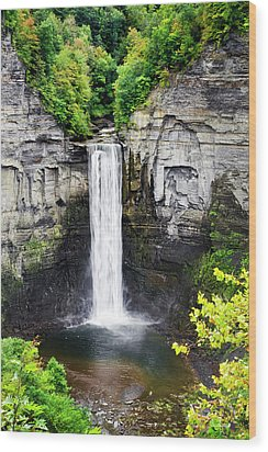 Taughannock Falls View From The Top Wood Print