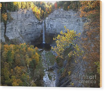 Wood Print featuring the photograph Taughannock Falls by Vilas Malankar