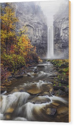 Wood Print featuring the photograph Taughannock Fog by Mark Papke